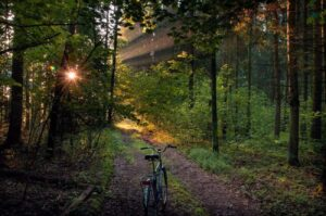 national park bike path belarus itinerary