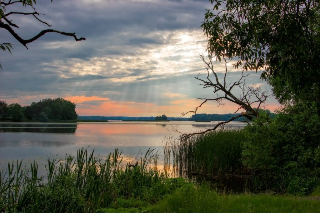 Природа Беларуси. Озеро