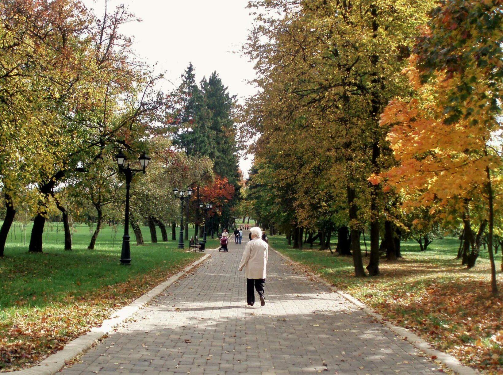 Дорожка в Лошицком парке в Минске