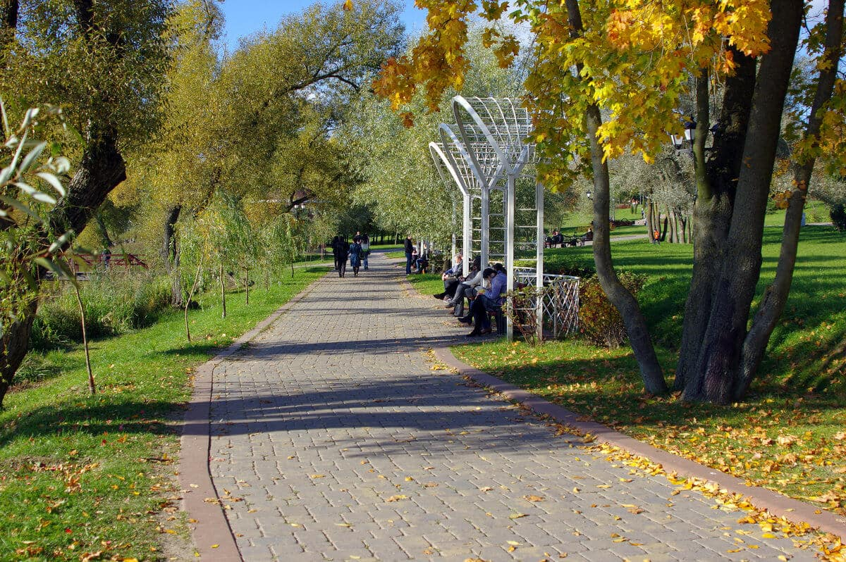 Benches in the Loshitsa Park