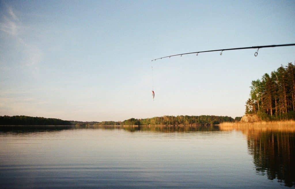 Удочка на озере, рыбалка в Беларуси